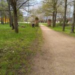 Gar abām parka takas malām būs atajaunotās hostu rindas